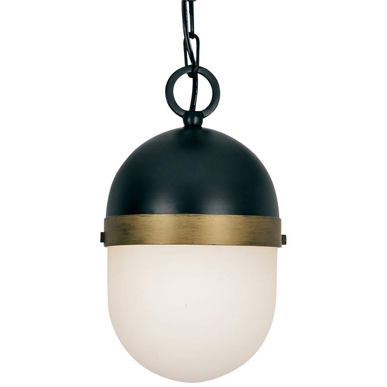 """Capsule 11"""" High Matte Black and Gold Outdoor Hanging Light"""