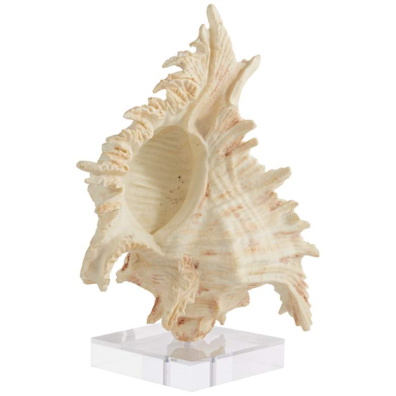 "Matte Cream 11 3/4"" High Conch Sculpture"