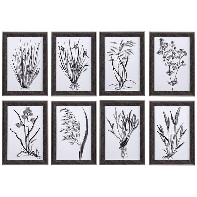 "Classic Botany 21"" High 8-Piece Framed Printed Wall Art Set"