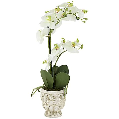 "White Phalaenopsis 21 1/2""H Faux Orchid in White Ceramic Pot"
