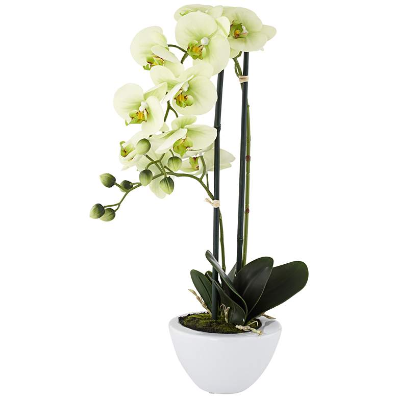 Light Green Phalaenopsis Faux Orchid in White Ceramic