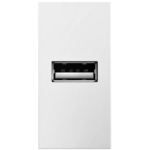 adorne® White 1/2 Gang USB Wall Outlet
