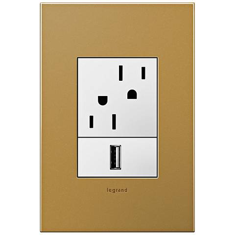 adorne Satin Bronze 1-Gang+ Cast Metal Wall Plate with Outlets