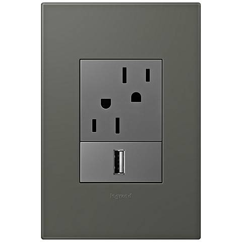 adorne Moss Grey 1-Gang+ Wall Plate w/ Outlets