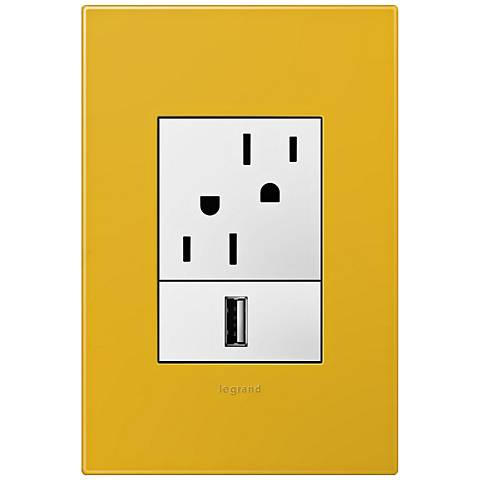 adorne Honey 1-Gang+ Wall Plate w/ Outlets