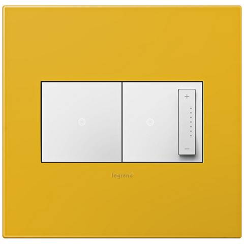 adorne Honey 2-Gang Wall Plate w/ Switch and Dimmer