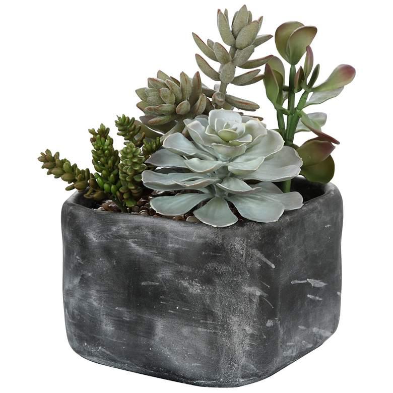 """Alverio Green Succulent 12""""W Faux Plant in Concrete Planter"""