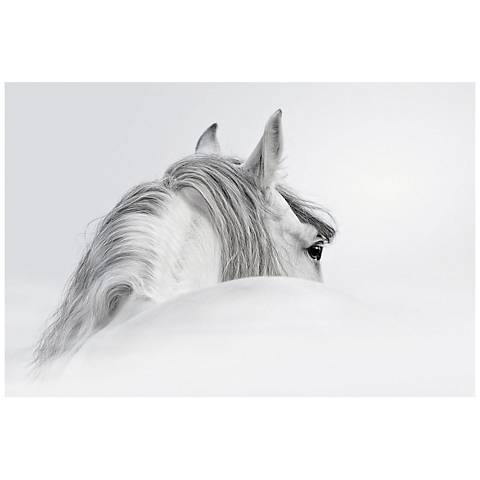 """Blanco 48"""" Wide Reverse Painted Glass Wall Art"""