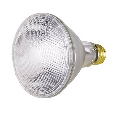 PAR30 50 Watt Long Neck Flood Light Bulb