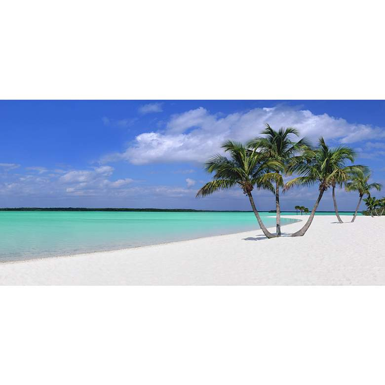 """Sugar Sand 48"""" Wide All-Weather Outdoor Canvas Wall Art"""