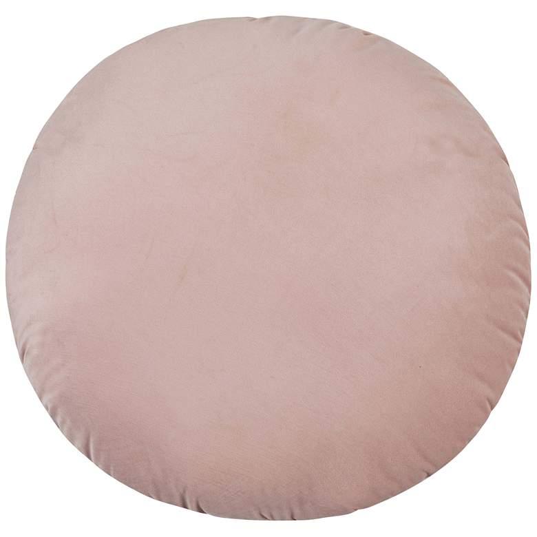"""Potter Blush Velvet 20"""" Round Decorative Pillow"""