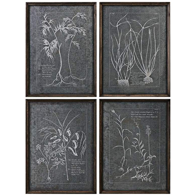 """Uttermost Root Study 4-Piece 23 3/4""""H Framed Wall Art Set"""