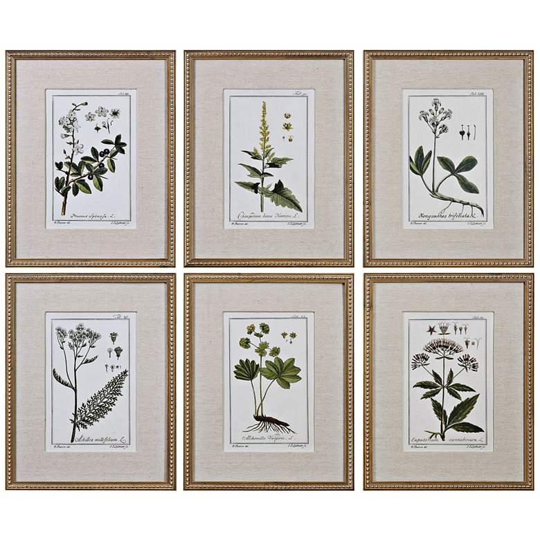 """Green Floral Botanical Study 6-Piece 22 3/4""""H Wall Art Set"""
