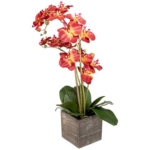 """Red Orchid 26"""" High Silk Potted Plant"""
