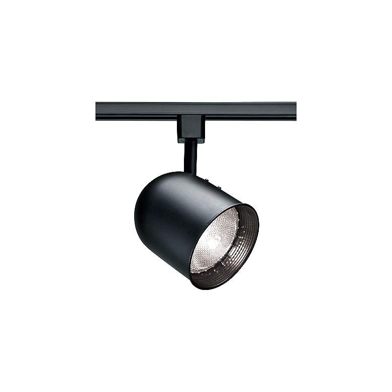 Nuvo Lighting 120V Black PAR20 Short Bullet Track