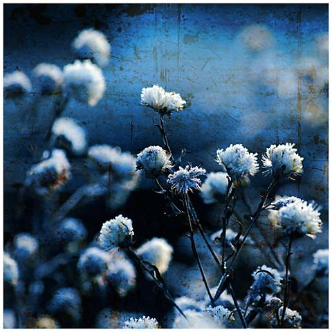 """Toppers 30"""" Square Stretched Canvas Wall Art"""