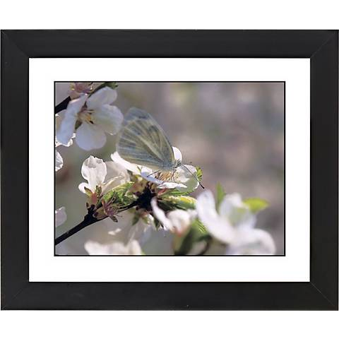 "Cherry Blossoms Black Frame Giclee 23 1/4"" Wide Wall Art"