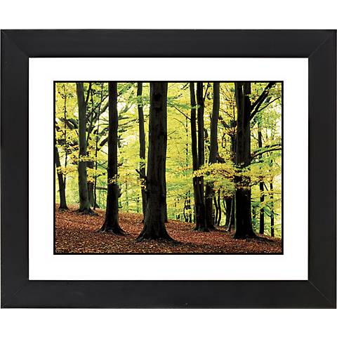 "Green Canopy Black Frame Giclee 23 1/4"" Wide Wall Art"