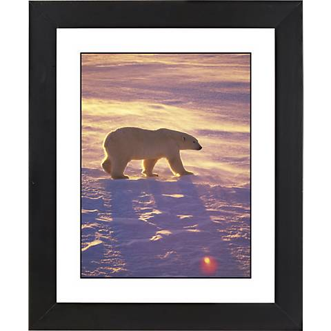 """Polar Bear Black Frame Giclee 23 1/4"""" High Wall Art"""