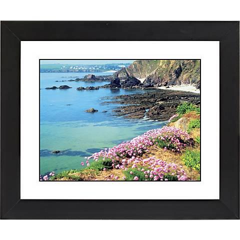 """Seaside Flowers Black Frame Giclee 23 1/4"""" Wide Wall Art"""