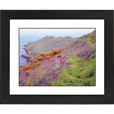 "Cliff Flowers Black Frame Giclee 23 1/4"" Wide Wall Art"
