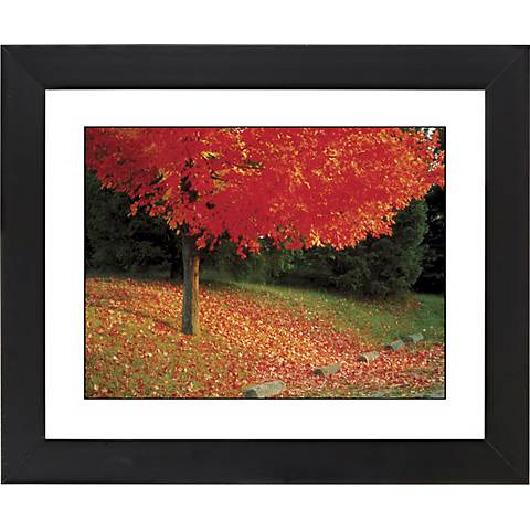 "Autumn Color Burst Black Frame Giclee 23 1/4"" Wide Wall Art"