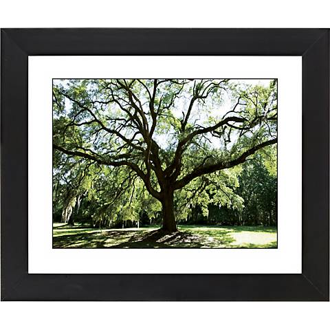 "Spreading Tree Black Frame Giclee 23 1/4"" Wide Wall Art"