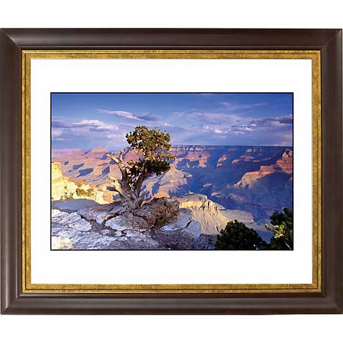 """Southwest Canyon Gold Bronze Frame Giclee 20"""" Wide Wall Art"""