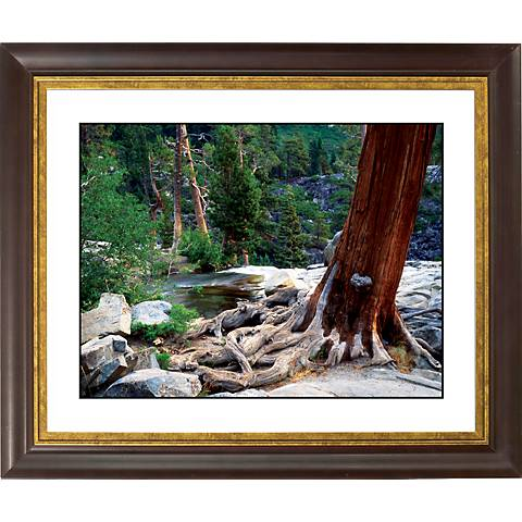 """Red Tree Gold Bronze Frame Giclee 20"""" Wide Wall Art"""