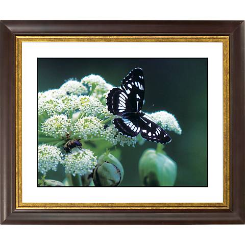 "Taking Flight Gold Bronze Frame Giclee 20"" Wide Wall Art"