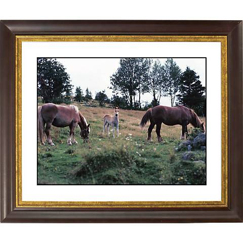 "Horses Gold Bronze Frame Giclee 20"" Wide Wall Art"