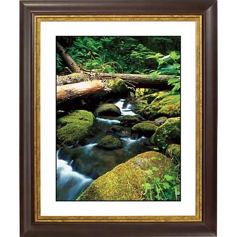 "Mountain Spring Gold Bronze Frame Giclee 20"" High Wall Art"