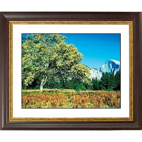 "Mountain Valley Gold Bronze Frame Giclee 20"" Wide Wall Art"