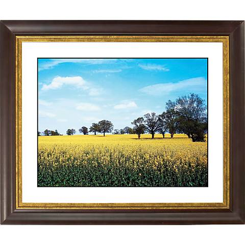 "Summer Field Gold Bronze Frame Giclee 20"" Wide Wall Art"