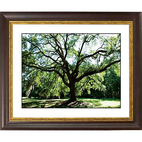 """Spreading Tree Gold Bronze Frame Giclee 20"""" Wide Wall Art"""