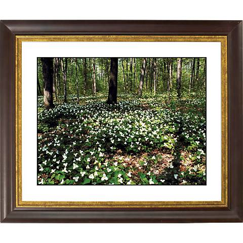 "Forest Flowers Gold Bronze Frame Giclee 20"" Wide Wall Art"