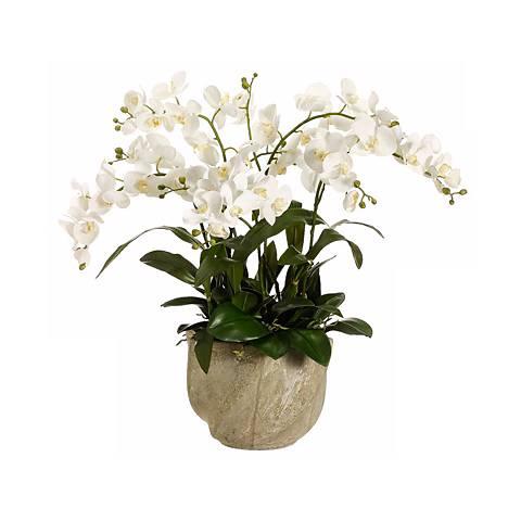 White Cymbidium Orchid & Stone Pot Floral Arrangement