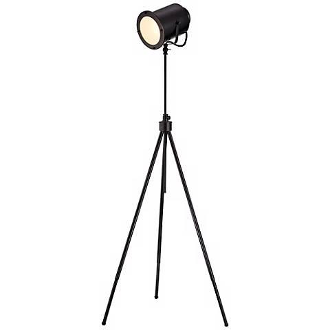 Lite Source Directeur Dark Bronze Floor Lamp