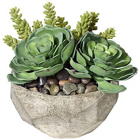Succulent Arrangement in Small Stone Bowl
