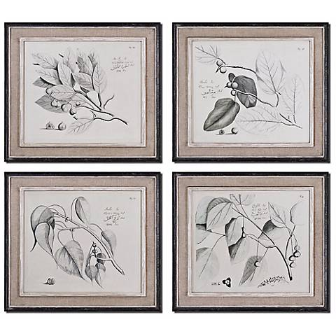Set of 4 Sepia Leaf Study Uttermost Wall Art
