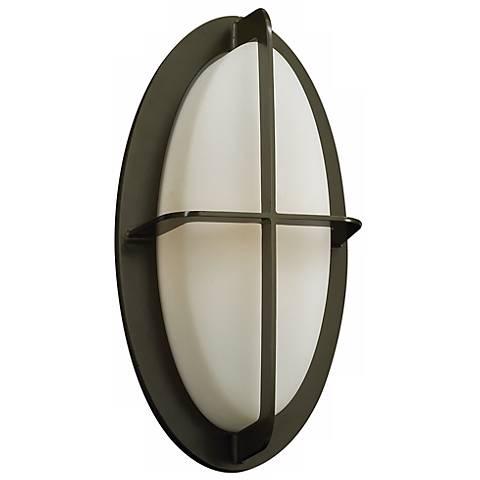 """Aqua 14"""" High Bronze Oval Outdoor Wall Light"""
